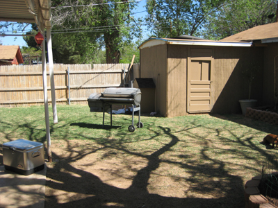 Dog House Area of Backyard
