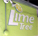 How To Take Care of a Lime Tree