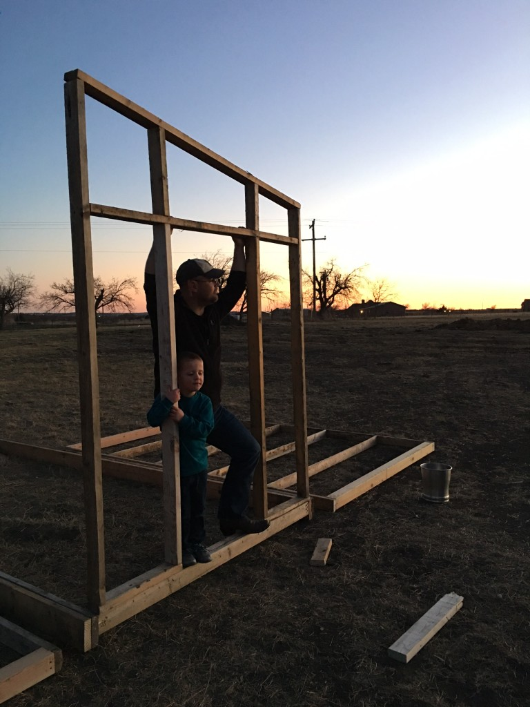 Chicken Coop Construction Continues